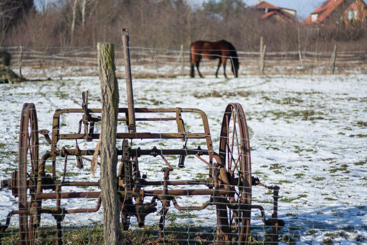 Gasthof zur Linde Wildenbruch Flaeming Pferdekoppel | Pinspiration