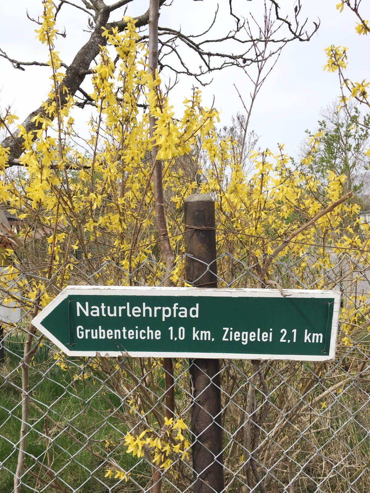 Glindower Alpen Wandern mit Kindern in Brandenburg