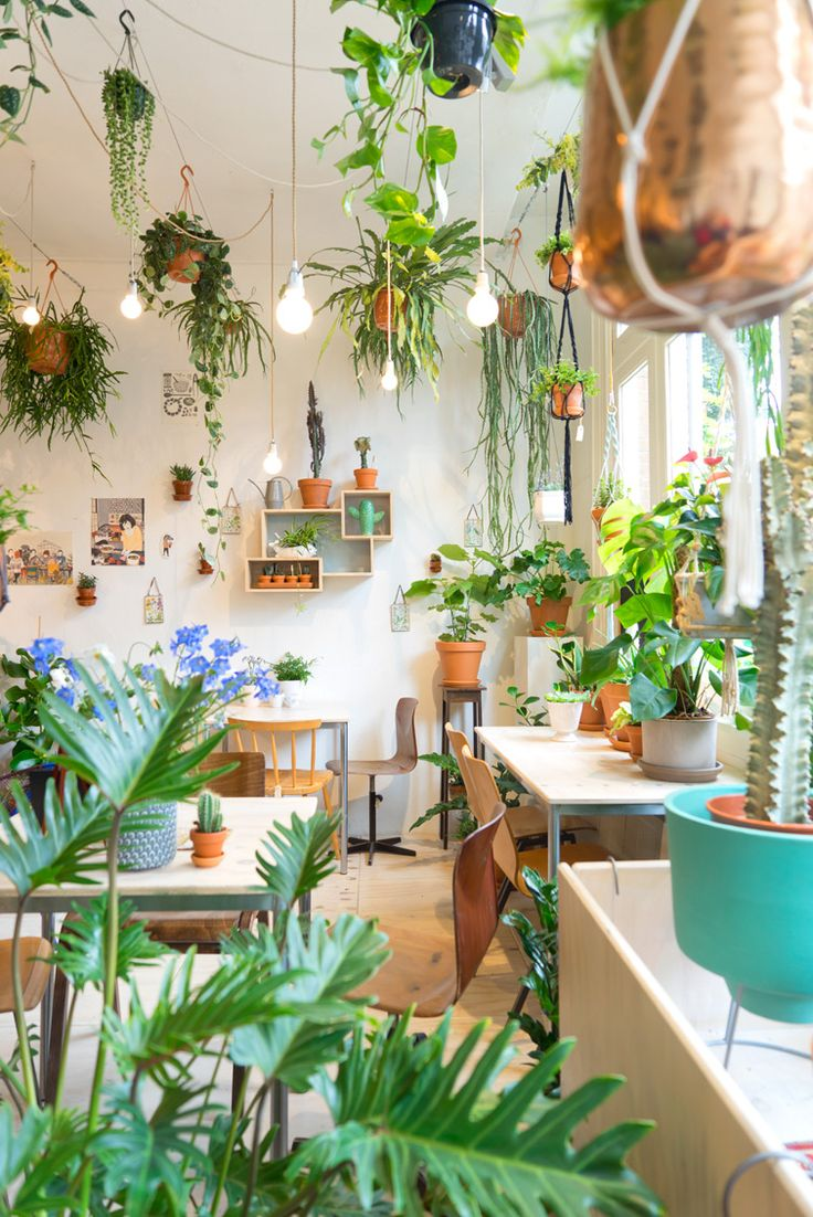 Pinterest Pinner Interview: Plant Cafe Amsterdam