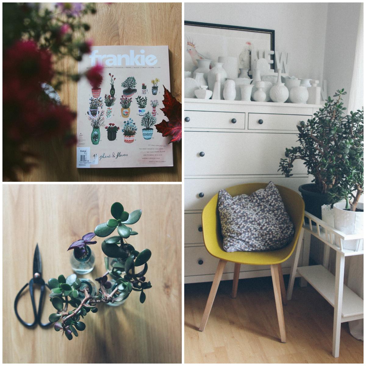 Urban Jungle Bloggers Collage Pflanzen Frankie Magazin