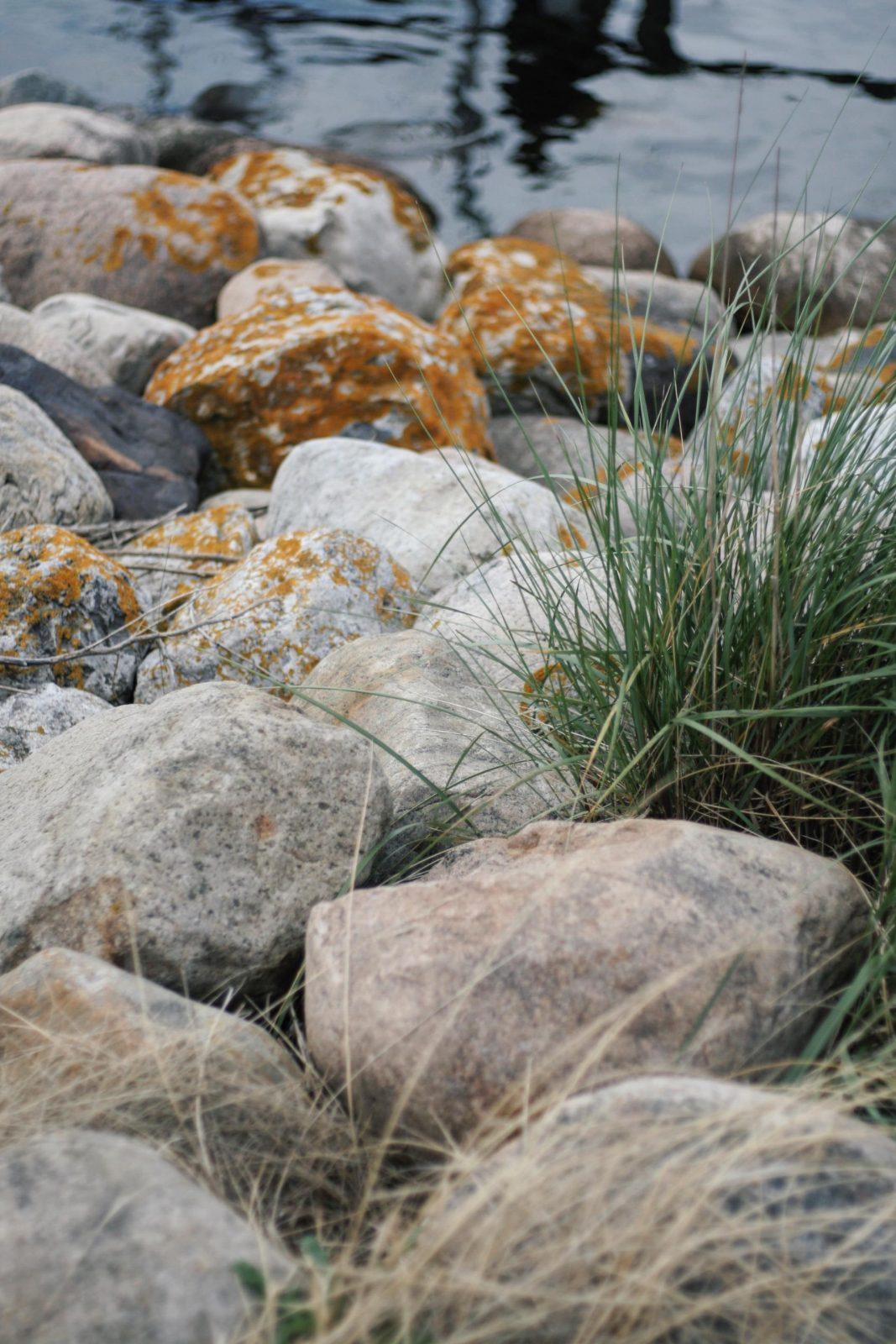 Bullerbue in Daenemark: Ein Sommertraum in Hornbæk