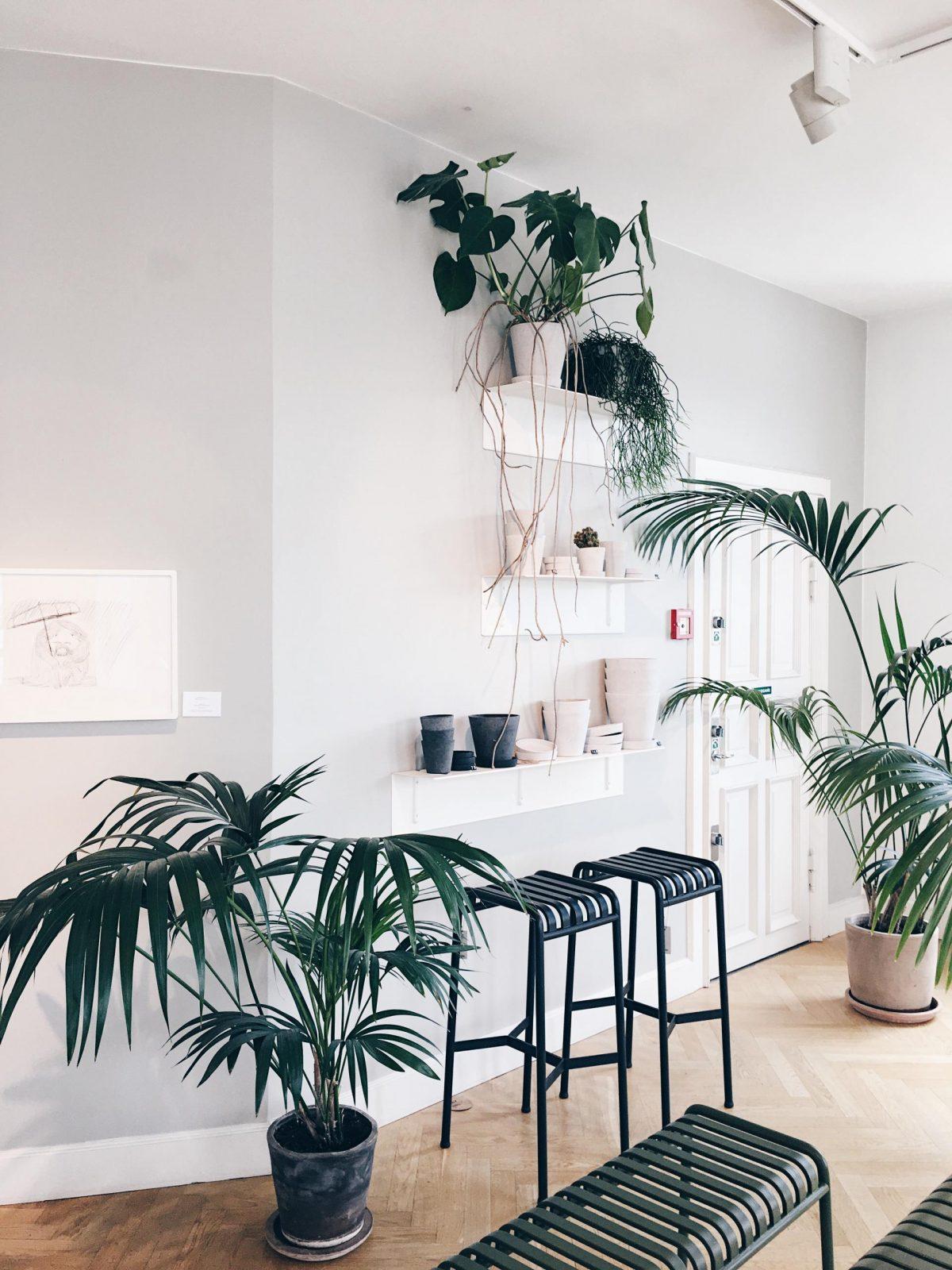 Familienausflug Kopenhagen Hay Store | Pinspiration