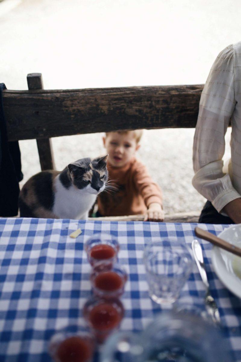 Ein toskanisches Familienparadies: Der Bio-Bauernhof Fattoria La Vialla Teil 1 #agriturismo #biobauernhof #urlaubmitkindern #toskanamitkindern #famileinurlaub #fattorialavialla   www.pinspiration.de
