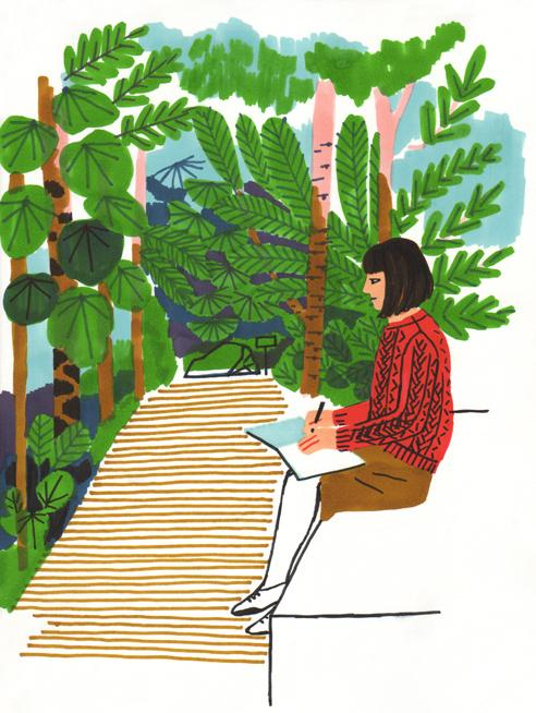 amelie fontaine illustration